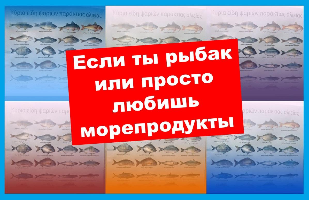 Кипр Рыба
