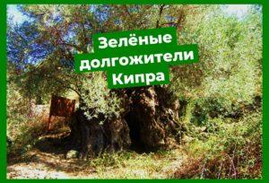 Кипр Природа
